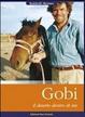 Cover of Gobi, il deserto dentro di me