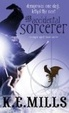 Cover of The Accidental Sorcerer