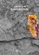 Cover of Il Canto delle Pietre
