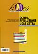 Cover of Limes. Rivista italiana di geopolitica 7/2013