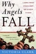 Cover of Why Angels Fall