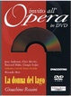 Cover of La donna del lago