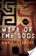 Cover of Wife of the Gods