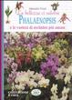 Cover of La bellezza ci salverà. Phalaenopsis e le varietà di orchidee più amate
