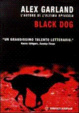 Cover of Black dog
