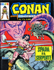 Cover of Conan il barbaro Colore n. 17