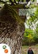 Cover of Giganti di legno e foglie