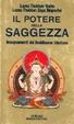Cover of Il potere della saggezza