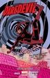 Cover of Daredevil, Vol. 1