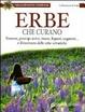 Cover of Erbe che curano. Essenze, principi attivi, tisane, liquori, unguenti... e il ricettario delle erbe selvatiche