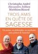 Cover of Trois amis en quête de sagesse