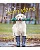 Cover of 365 motivi per sorridere