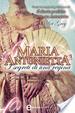 Cover of Maria Antonietta. I segreti di una regina