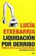 Cover of Liquidación por derribo: cómo se gestó la que está cayendo