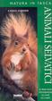 Cover of Animali selvatici