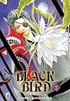 Cover of Black Bird vol. 11
