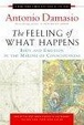 Cover of The Feeling of What Happens
