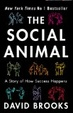 Cover of Social Animal