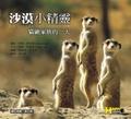 沙漠小精靈:貓鼬家族的一天