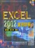 EXCEL 2002實例詳解