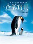企鵝寶貝:南極的旅程