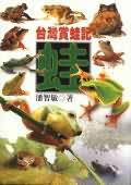 台灣賞蛙記