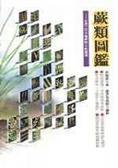 蕨類圖鑑:台灣三百多種蕨類生態圖鑑