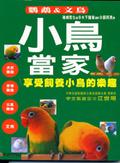 小鳥當家:享受飼養小鳥的樂趣:鸚鵡&文鳥