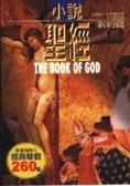 小說聖經:新約篇