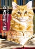 圖書館裡的貓
