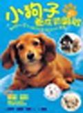 小狗子養成初級班:專為0~2歲小狗子成長設計的育犬寶典