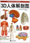 3D 人體解剖圖