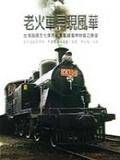 老火車再現風華:台灣鐵路文化保存紀實暨鐵道博物館之展望