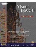 Visual Basic 6.0視窗程式設計經典:資料庫篇