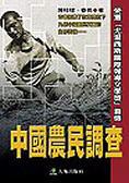 中國農民調查