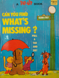 Can You Find What's Missing?