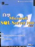 自學Microsoft SQL Server 2000 21天課程