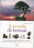 A scuola di bonsai