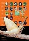 蝸牛不思議:21個不可思議的主題&100種台灣蝸牛圖鑑