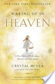 Waking up in heaven : : a true story of brokenness- heaven- and life again