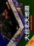 大台北天地遊:空中散步.地面導覽