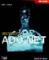 Microsoft ADO.NET程式設計深入探討