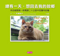 總有一天-想回去我的故鄉:來自福島第一核電廠二十公里半徑圈內的貓