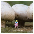 Microworlds /
