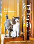 貓在江湖:這些年-貓咪教我的事
