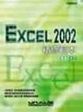 Excel 2002精修範本