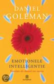Emotionele intelligentie / druk 32