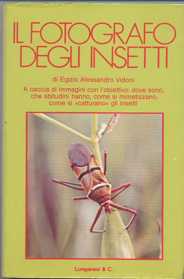 Image of Il fotografo degli insetti
