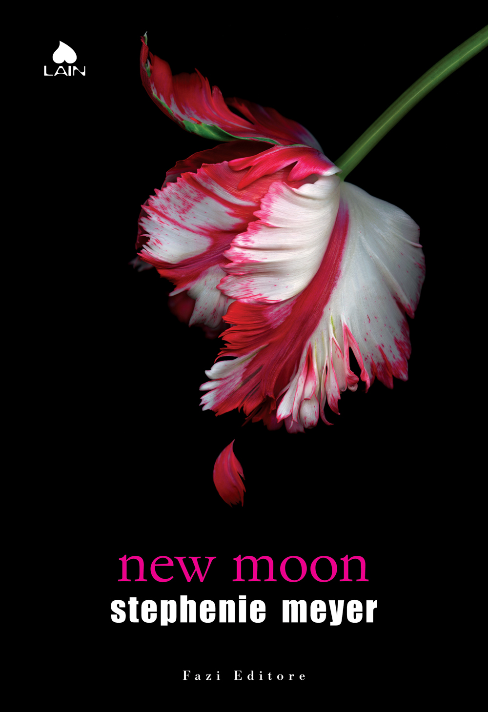 More about New Moon