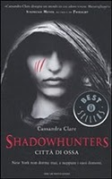 More about Shadowhunters